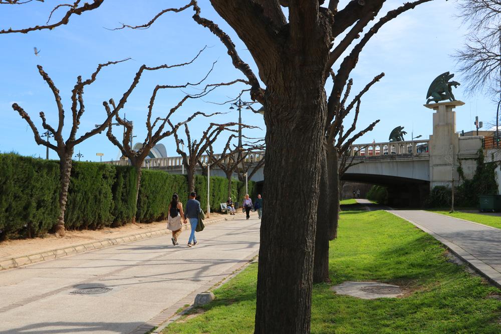 Turia park, Valencia