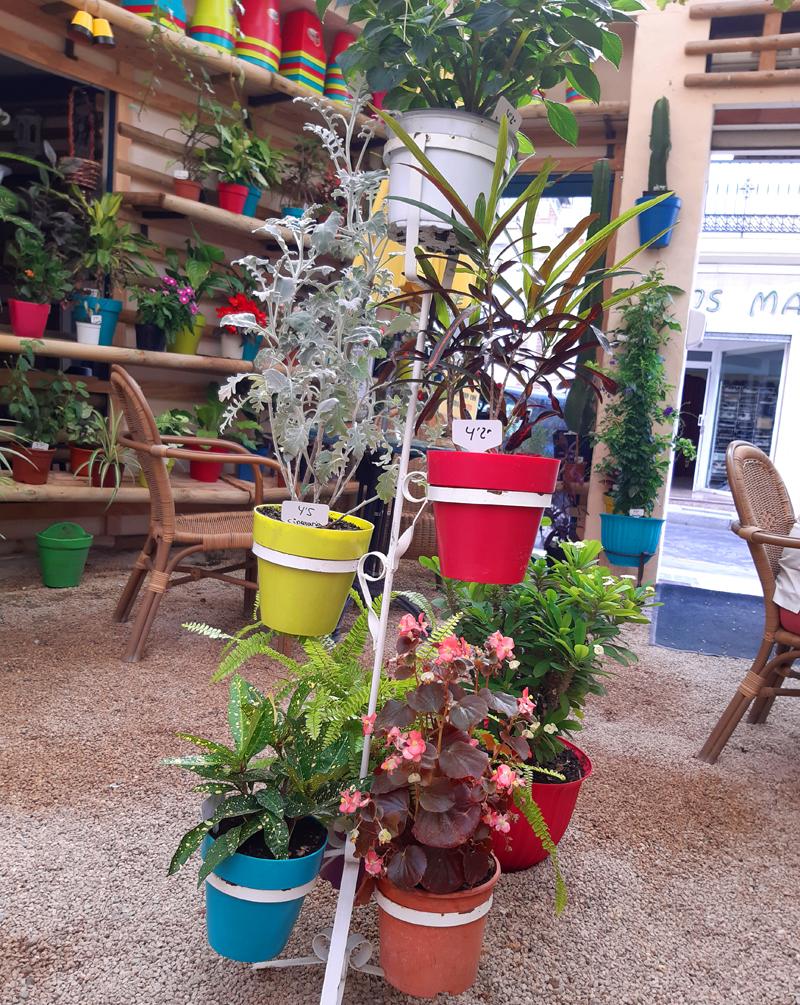 "Cafés in Nerja – ""Vintage Coffee Shop"""